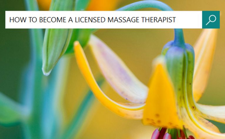 How To Become A Licensed Massage Therapist In Washington State